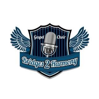 Bridges 2 Harmony Concert  January 30